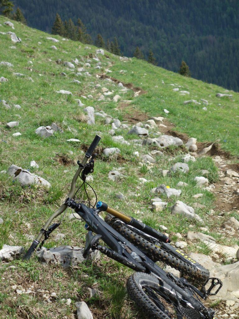 Am Grubereck startet der Trail und es geht stark verblockt gleich ans Eingemachte,
