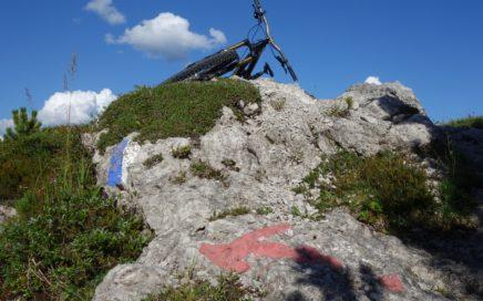 Bayrbach Alm Trail