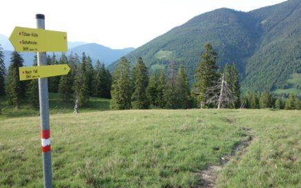 Der erste Trail von der Lerchkogel Alm ist beschildert ...