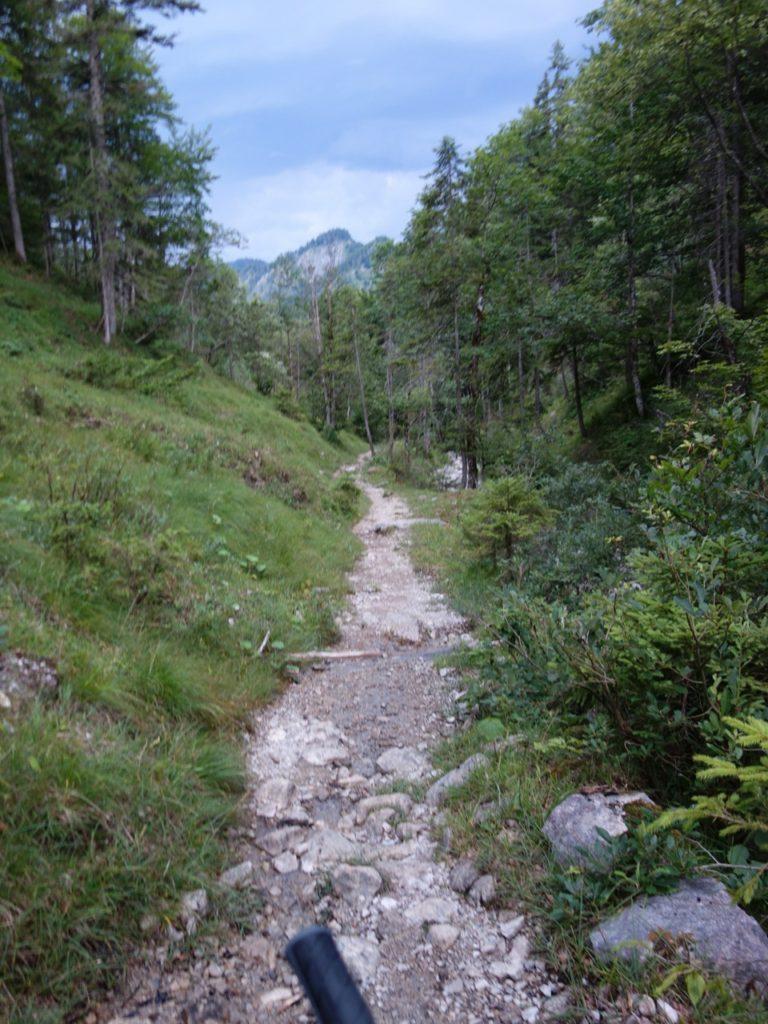 der Trail ziemlich gradlienig am Biergarten in Siebenhütten endet.
